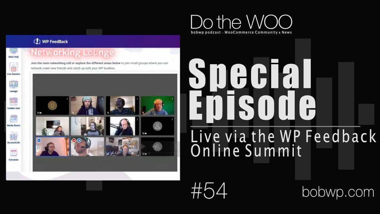 Do the Woo Podcast Live on WP Feedback Online Summit